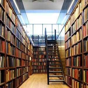 Библиотеки Русского