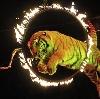 Цирки в Русском